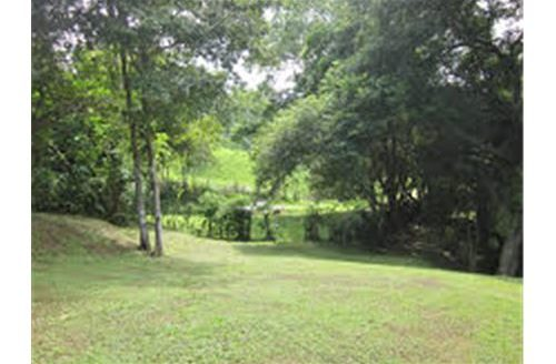 Macaw Reserve Residential Lot for Sale in Costa Rica!