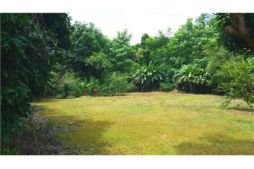 Flat property ready to be developed in Esterillos, Costa Rica!