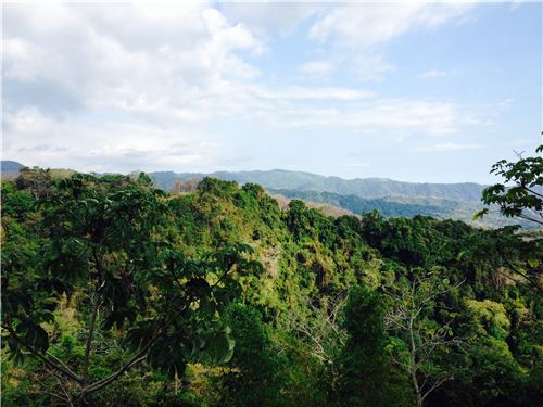 Privacy  Beauty  Nature all Present in this 75 Hectacres of Beautiful Land in Herradura, Costa Rica!