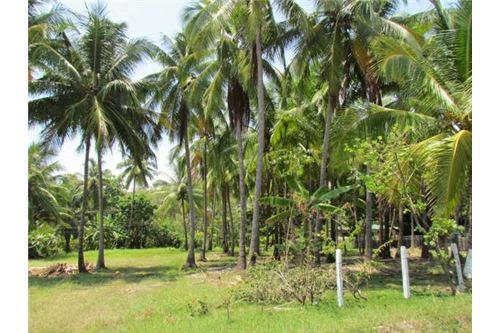 Beachfront Lot in the Central Pacific Region of Palo Seco, Costa Rica!