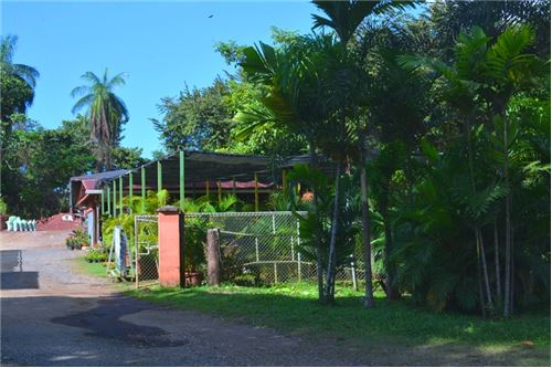 Successful Running Business is available for Sale in the Jaco Beach Area!