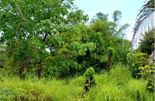 Large lot for sale in Esterillos with great views and proximity to the Beach!