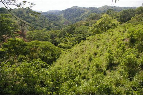 Nineteen Lots Subdividable are on the Market in Hermosa Beach, Costa Rica!